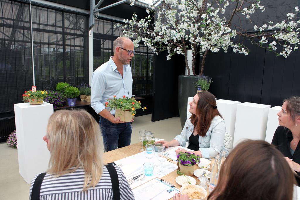 Mediajury kiest Balkon- en Terrasplant van het Jaar 2018