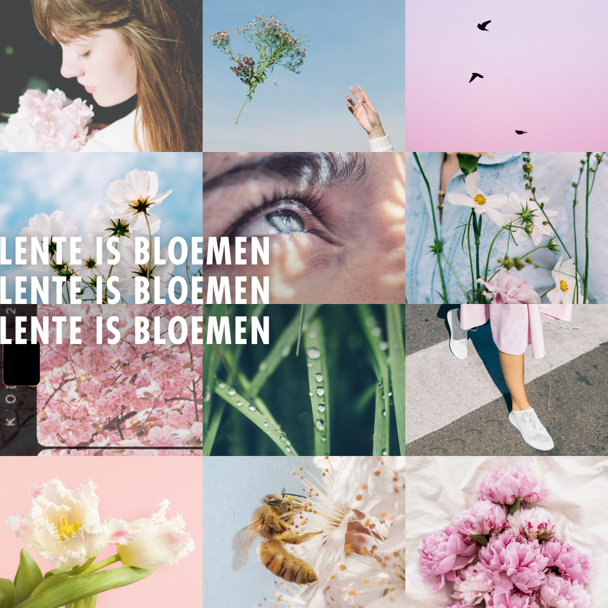 Lente is Bloemen - Mooiwatbloemendoen - Bloemenbureau Holland