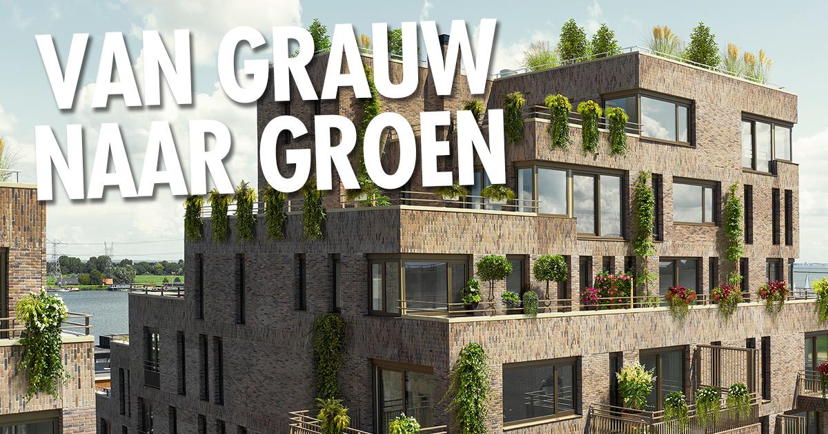 Campagne-inzet Van Grauw naar Groen