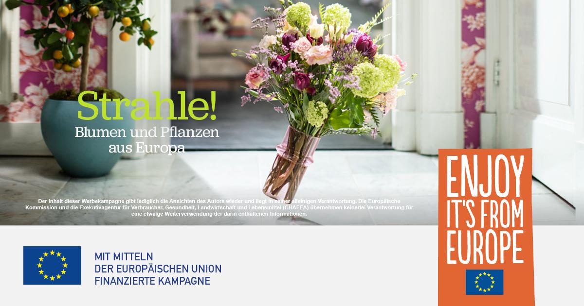 Gemeinsame Werbekampagne für europäische Blumen und Pflanzen-2