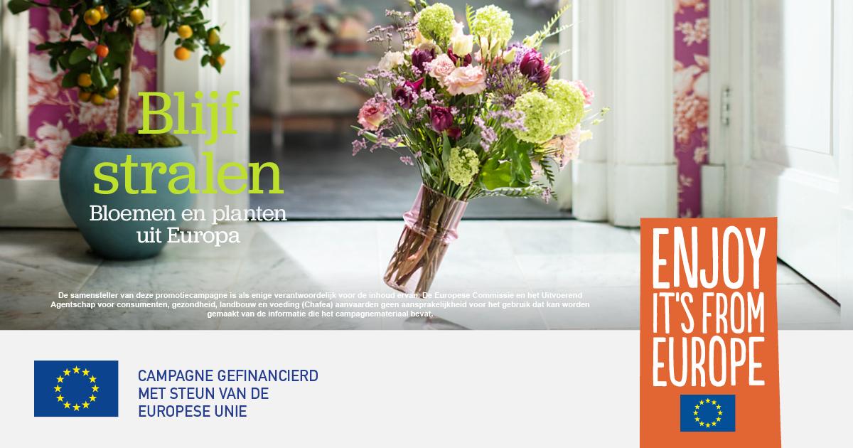 Gezamenlijke promotiecampagne Europese bloemen en planten-2