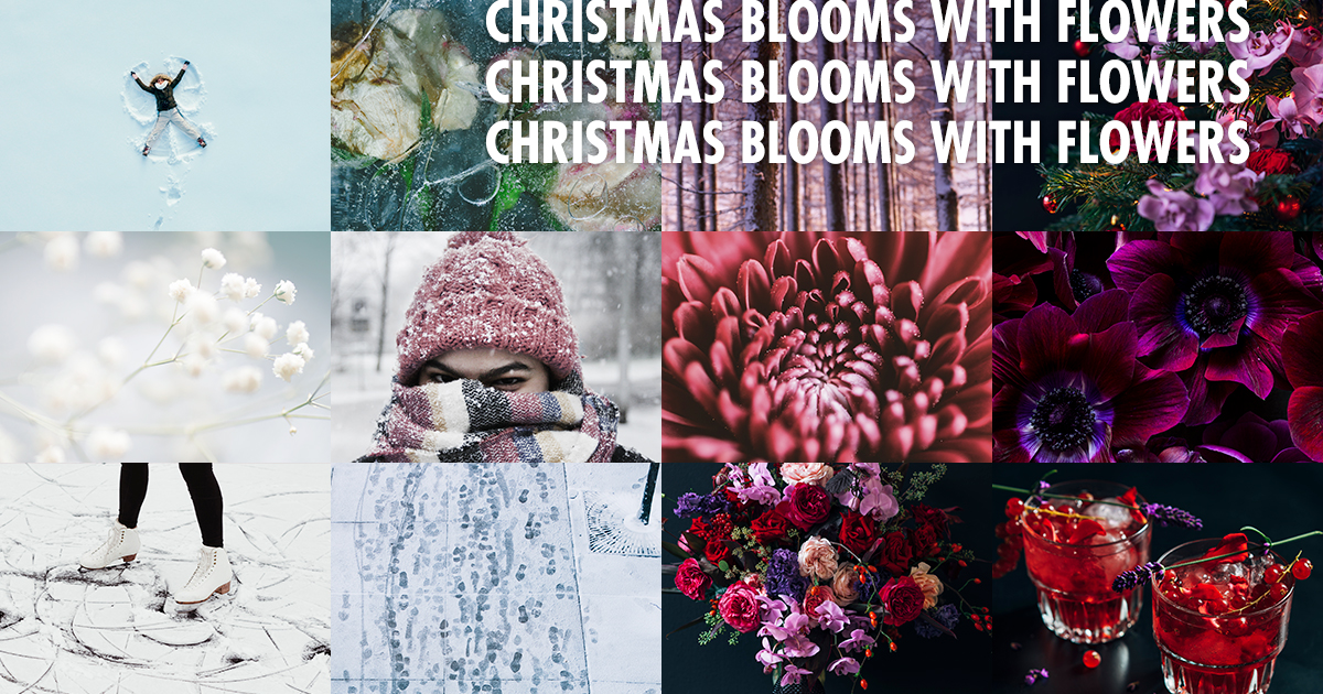Christmas Blooms with Flowers