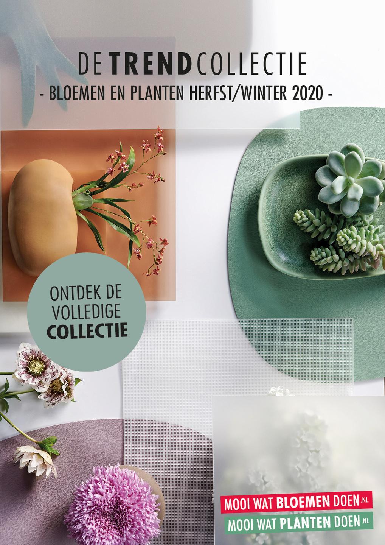 De Trend Collectie Herfst/Winter 2020