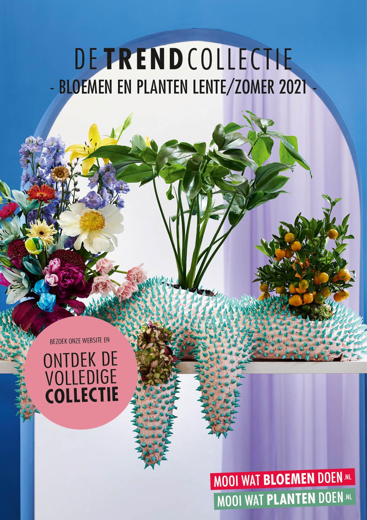 Evaluatie Trend Collectie lente/zomer 2021