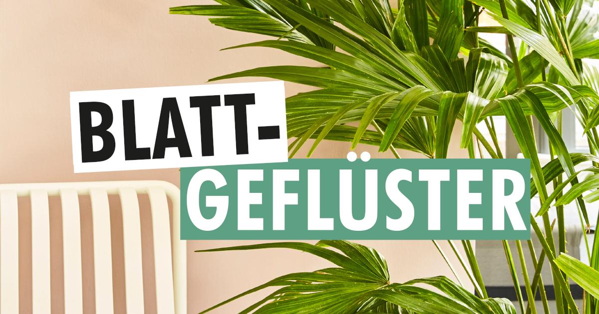 German plants podcast