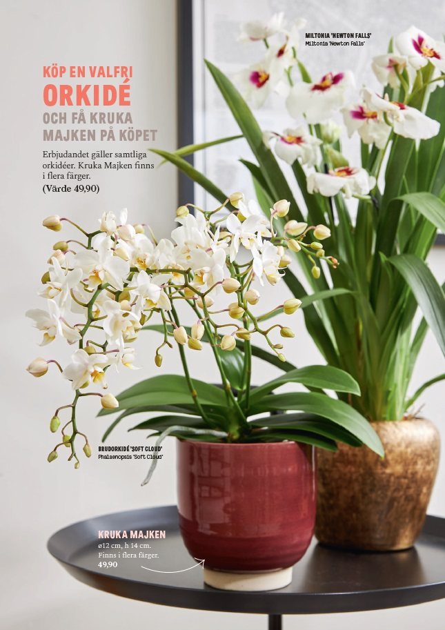 Blomsterlandet shopper activatie orchidee folder achterzijde