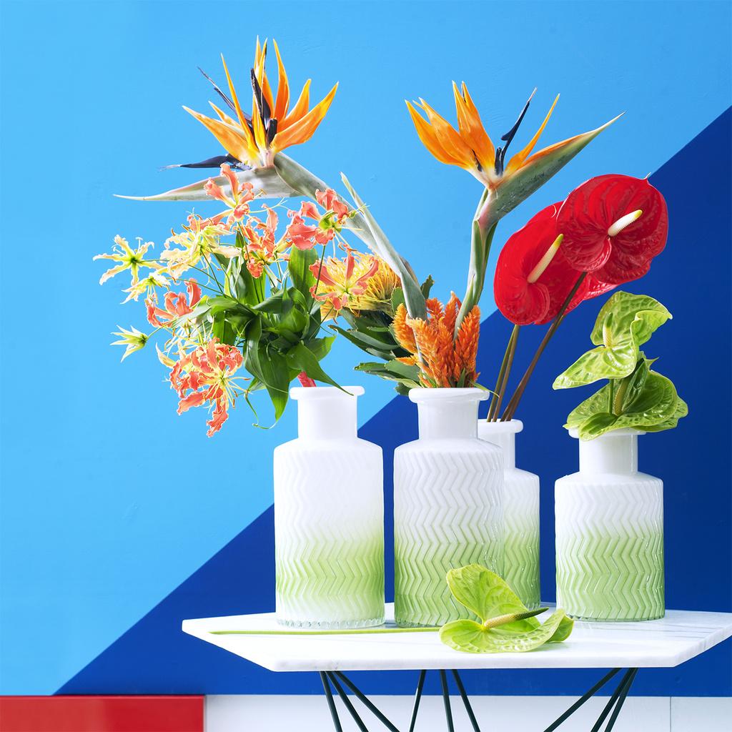 In september staan de exoten op de BloemenAgenda