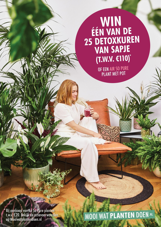 Shopper-activatie Bedankt Plant bij Nederlandse bloemist