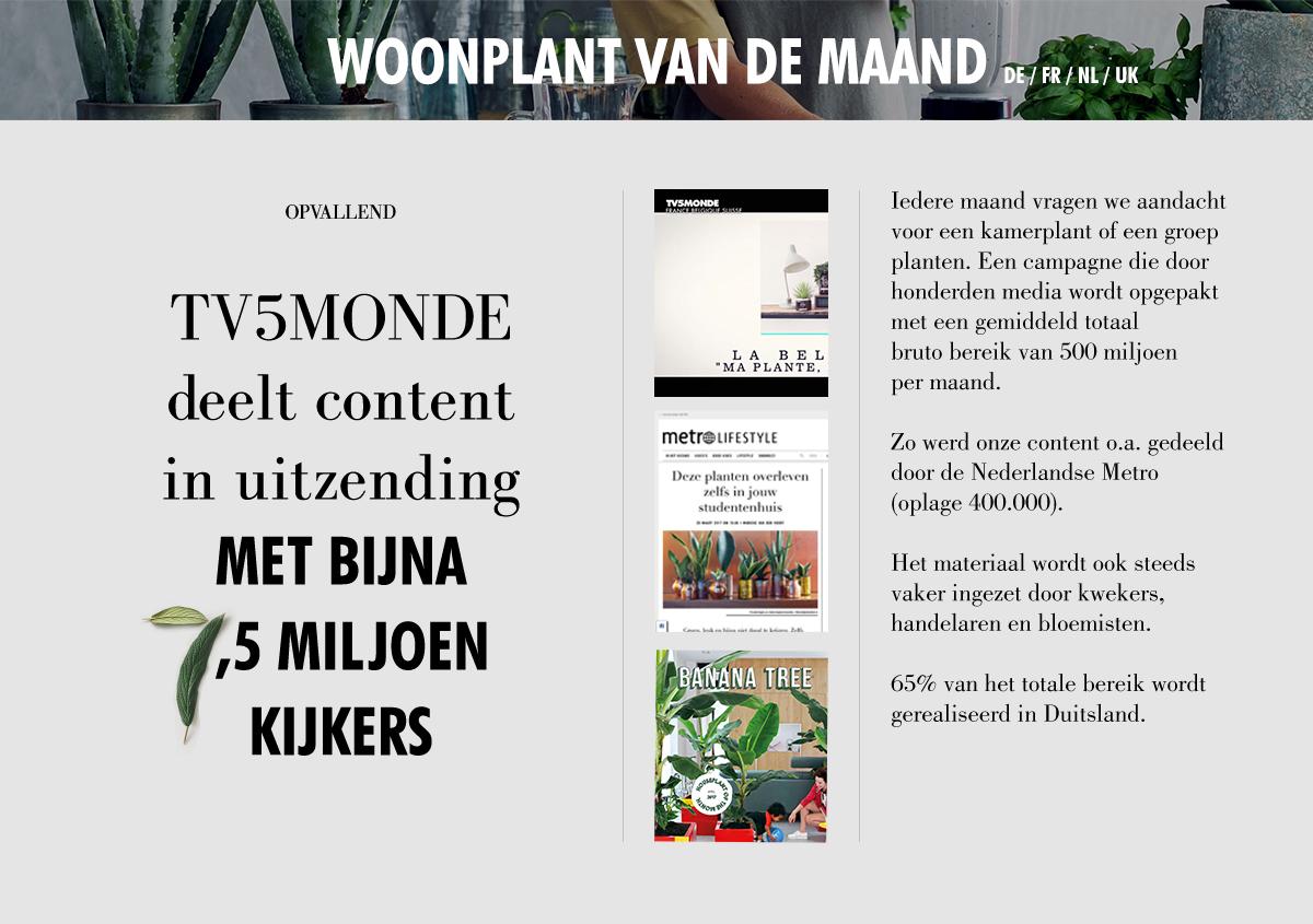 Bloemenbureau Holland: terugblik eerste halfjaar van 2017
