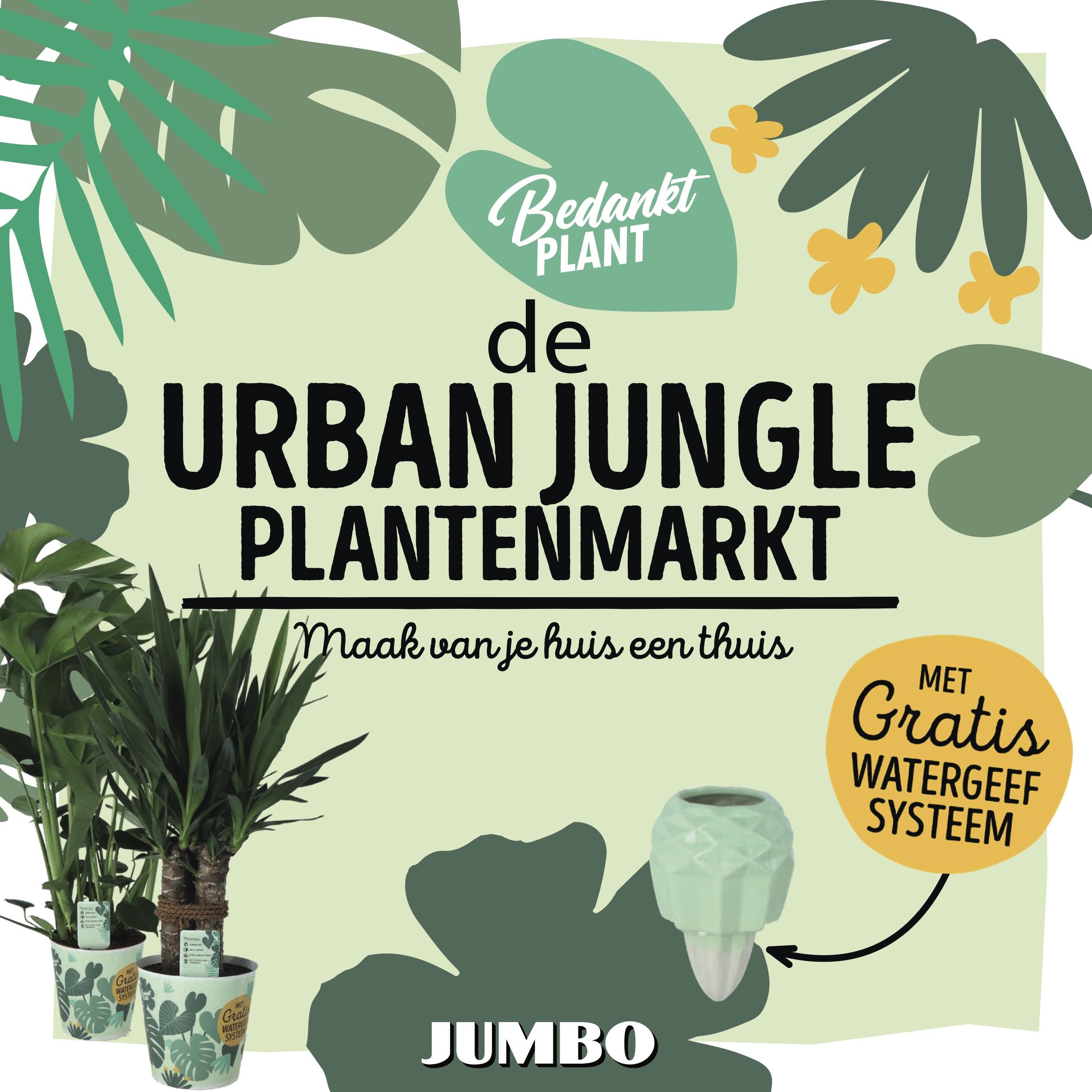Shopper activatie met Jumbo: de Urban Jungle Plantenmarkt