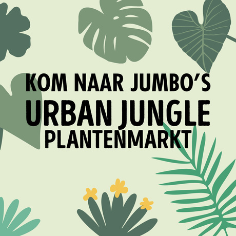 Shopper activatie met Jumbo: de Urban Jungle Plantenmarkt