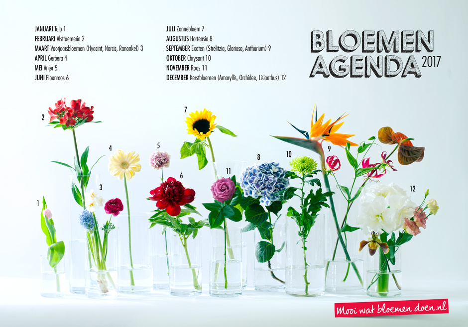Top Bloemenagenda 2017 bekend | Bloemenbureau &DU99